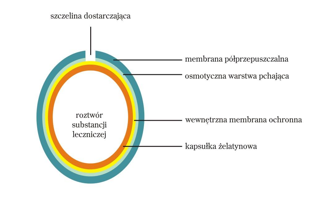 systemy_terapeutyczne_4
